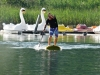 SUP Center Schwarzsee by Side Cut Sports